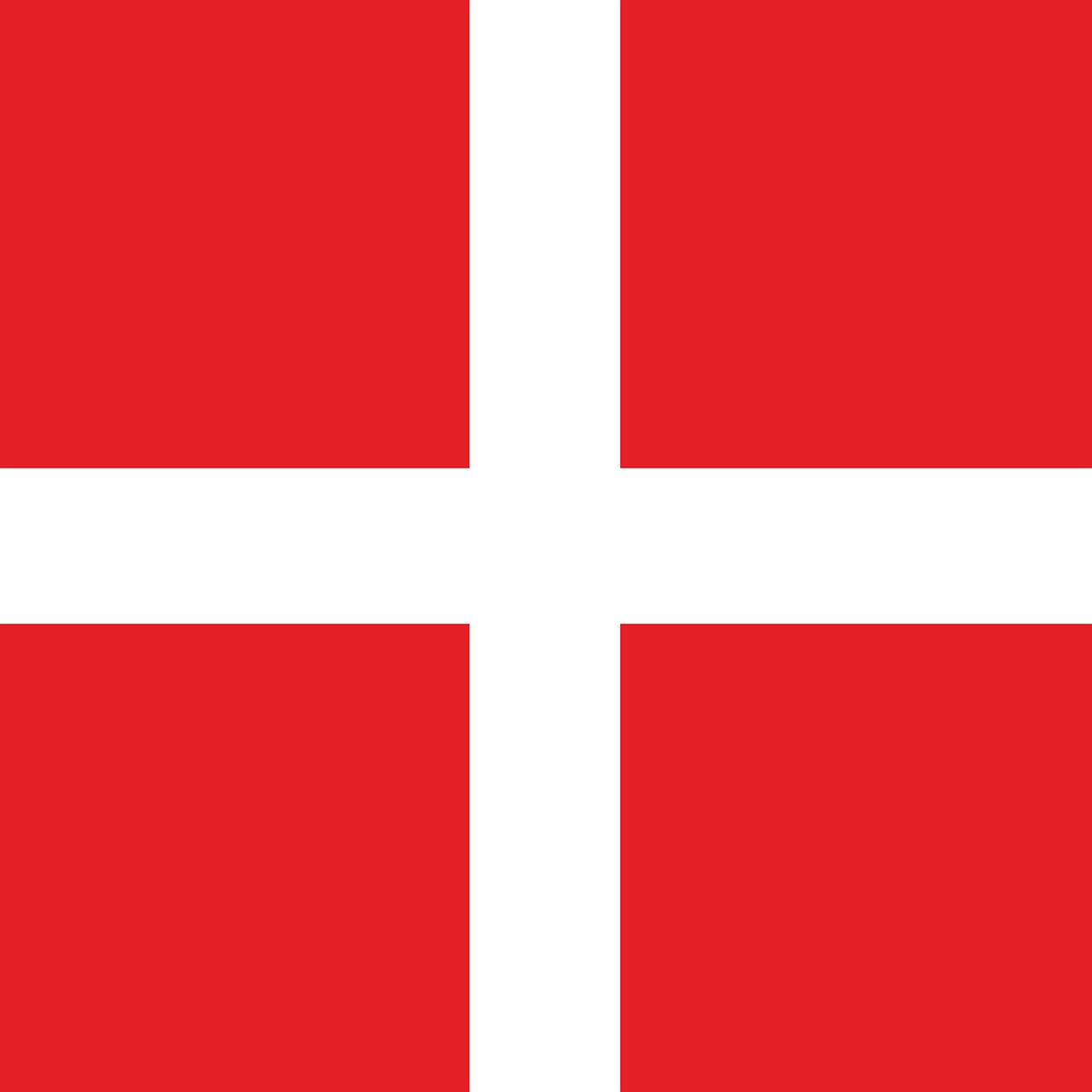 Tłumaczenie duńskich dokumentów samochodowych online